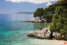 Chorwacja > Riwiera Makarska > Podgora – Apartament - 2