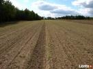 Sprzedam ziemię rolną Drwały koło Wyszogrodu Wyszogród