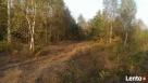 Działka leśno rolna Szczechowo okolice Sierpca
