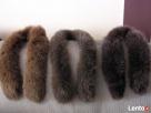 Jenot lisy skórki obszycia kaptur nat skóra jenoty kolory Nowy Sącz