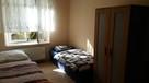 Mieszkanie, pokoje Tysiąclecie do wynajęcia