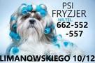 Strzyzenie psow, kotow, PSI fryzjer, DWORCOWA51 - 1