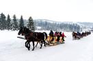 Obozy zimowe 2022 ViaCamp - obozy młodzieżowe Zakopane 2022