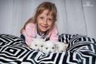 West Highland White Terrier, Zapraszamy do Rezerwacji !!! - 7