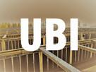 Przeglądy budowlane-inwentaryzacje-nadzór-projekt org. ruchu