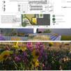 Projektowanie ogrodów - ogrodnik - brukarz