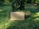 Płyta z drzewa lipowego dla rzeźbiarza. - 3