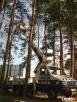 Wycinka i pielęgnacja drzew W Lublinie-tanio - 2