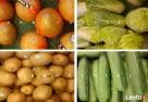 Warzywa i owoce z dostawą Szczecinek