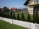 Ogrodzenie-przęsla-brama - 2