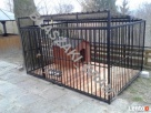 Kojec dla psa Kojce dla psów Klatki Klatka Boks Boksy 24h Grójec