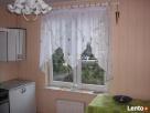 Dom do wynajęcia, blisko granicy, mieszkanie, lubuskie, 1300 Ośno Lubuskie