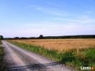 Piękna działka 5 hektarów nad rzeką Wilga Warszawa