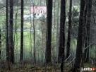 Piękny dom z dużą działką - kotlina kłodzka - 7