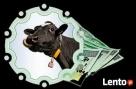pozyczki gotówkowe i konsolidacje pod hipoteke Kruszwica
