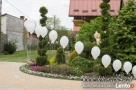 Pudło z balonami - helowe balony, balony z helem