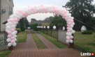 baloniki_net - balony z helem na wesele najlepiej na Śląsku - 4