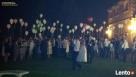 baloniki_net - balony z helem na wesele najlepiej na Śląsku - 6