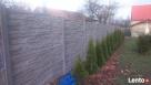 Kompletne ogrodzenia, bramy, furtki wraz z montażem. - 3