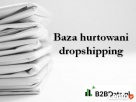 Baza hurtowani dropshipping