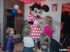 Animacje dla dzieci/ Wynajem duzych,kolorowych maskotek