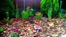 Usługi ogrodnicze - 2