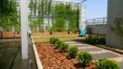 Projekty ogrodów - przede wszystkim profesjonalnie - 5