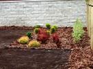 Usługi ogrodnicze - 5