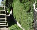 Pomyśl o swoim ogrodzie już teraz! - 3