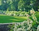 Profesjonalizm i zaangażowanie w budowaniu ogrodów - 2