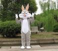 Królik Bugs Chodząca żywe maskotki Kostium reklamowy