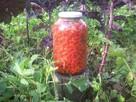 Kiszony owoc dzikiej róży - 4
