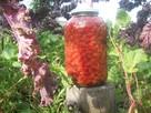 Kiszony owoc dzikiej róży - 3