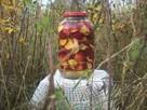 Kiszone jabłka - 3