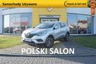 Kadjar Intens TCe 160 /Pak. Oświetlenie,/Techno Premium/Zimowy