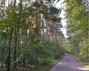 Działka leśna  gm. Wiązowna