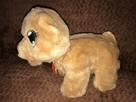 Zabawka niedźwiadek chodzi i śpiewa - 1