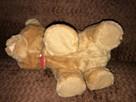 Zabawka niedźwiadek chodzi i śpiewa - 3
