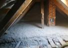 Zwalczanie kuny Naprawa izolacji dachu Wdmuchiwanie celulozy - 8