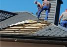 Zwalczanie kuny Naprawa izolacji dachu Wdmuchiwanie celulozy - 14
