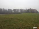atrakcyjnie położona działka rolna Tolkmicko