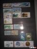 Sprzedam klaser ze znaczkami - 8