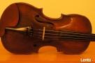 PILNE skrzypce od skrzypka z FILHARMONII Testore-tel. Zamość