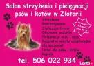 Saln strzyżenia i pielęgnacji psów w Złotorii Lubicz