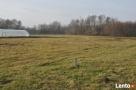 Działka rolno budowlana Urszulin