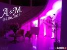 Oświetlenie Dekoracyjne Sali. Ciężki dym na Pierwszy Taniec Kielce