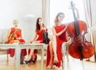 Wigilia firmowa, koncert kolęd - kwartet smyczkowy, trio - 1