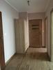 Nowe mieszkanie z dwoma pokojami wynajme - 3