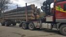 drewno tartaczne JODŁA BUK dłużyca
