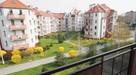 Olsza - mieszkanie dwupokojowe 42m2 do wynajęcia od 1 luty - 5